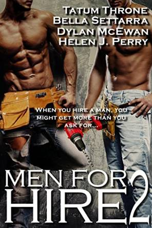 men for hire 2 book cover